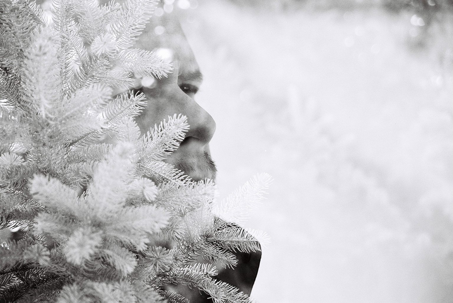 WinterRuss